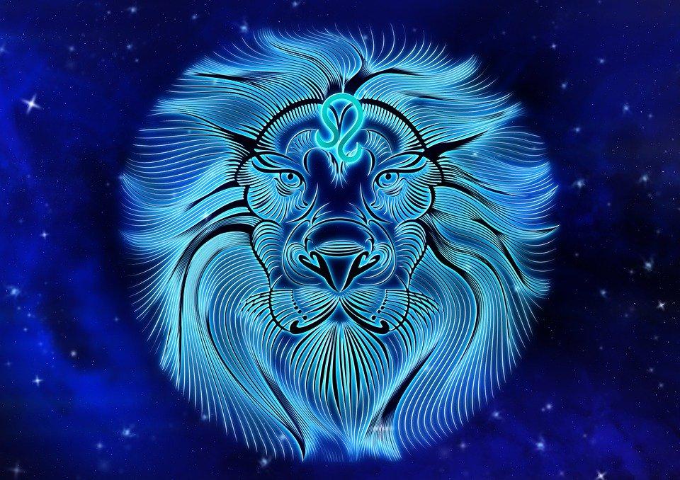 caratteristiche del segno del leone